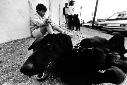A boy waits with his dog at a rabies clinic in Beach Haven, NJ. Photo by David Gard/Times Beacon Newspapers
